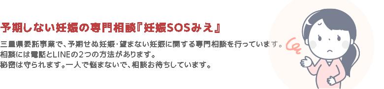 page_ttl_sos1